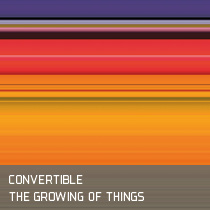Artwork Coverdesign - Convertible The Growing of Things